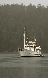 Nice_trawler_1